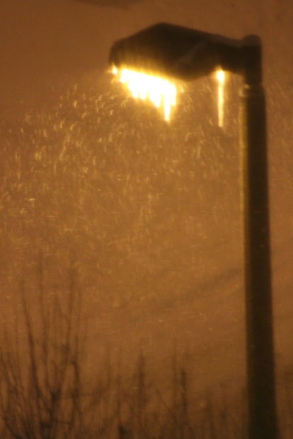 Mid-blizzard (-38 deg cel), Bozeman, MT