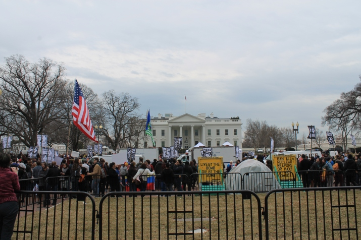 Protest out the front of the White House
