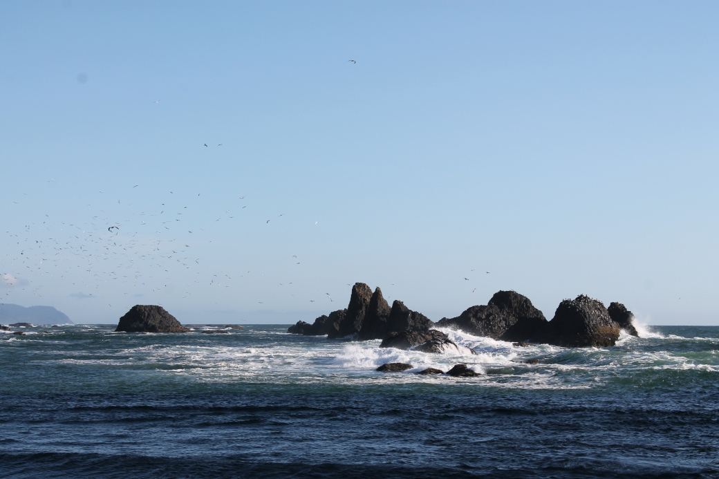 Seal Rock OR