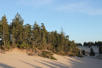 Florence sand dunes OR