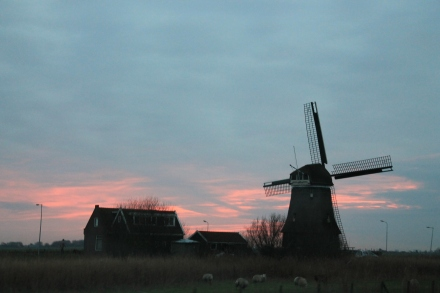 Sunsets and Windmills