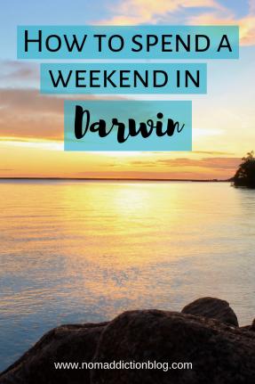 darwin-weekend-pin